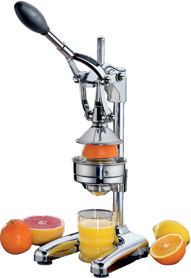 Citruspers frietsnijder